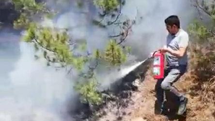 Makinistler treni durdurup orman yangınını söndürdü