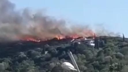 Muğla Dalaman'dan sonra Datça'da da orman yangını çıktı