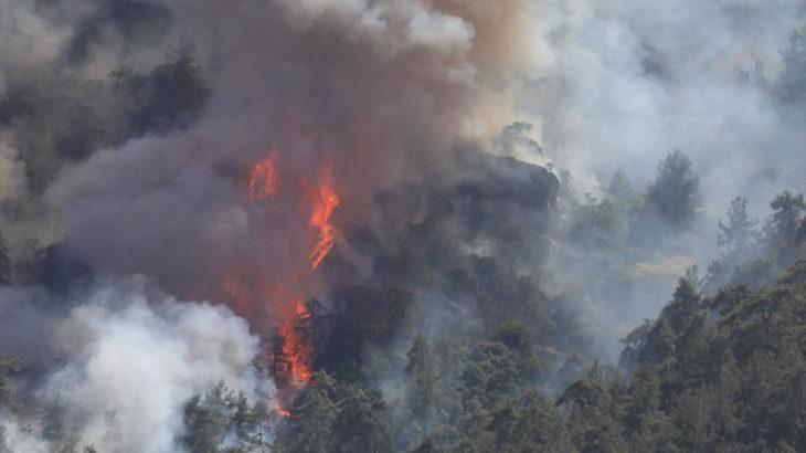 Orman yangını Muğla'dan Aydın'a sıçradı: 3 gündür söndürülemiyor