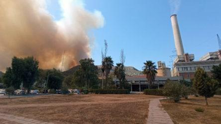 Muğla'nın Milas ilçesinde yangın termik santrale ulaştı