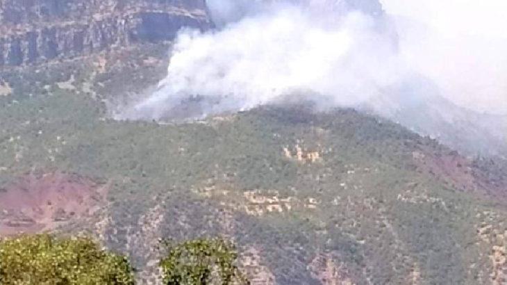 Siirt'in 2 ilçesinde ormanlık alanda yangın çıktı