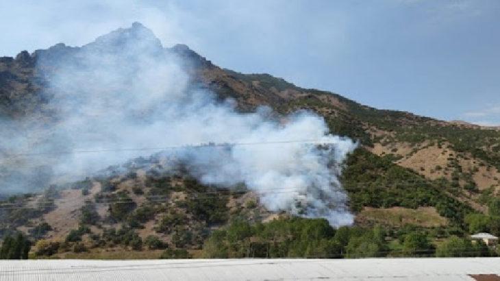 Hakkari'nin Şemdinli ilçesinde ormanlık alanda yangın çıktı
