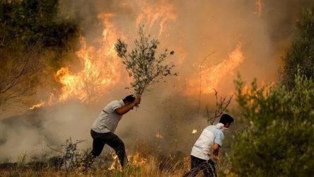 Pakdemirli: Antalya, Mersin ve Bodrum'daki yangınlar kontrol altına alındı