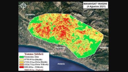 Yangın bölgeleri haritalandırıldı