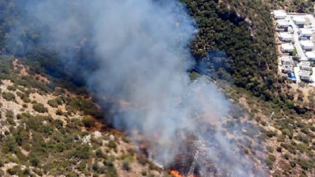 Bodrum'da orman yangını başladı